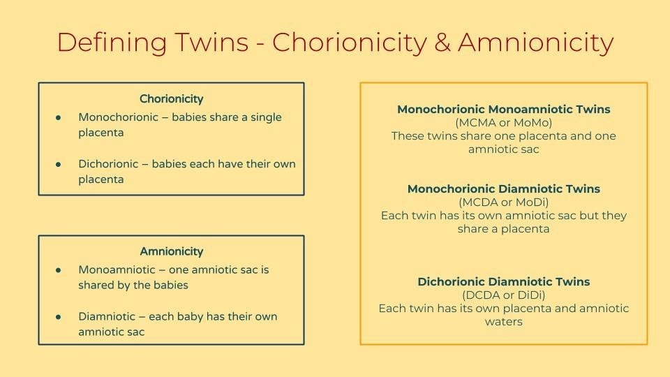 Multiple Multiples: What the different types of twins really